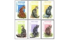 AFG0001Z Racial cats 6 stamps MNH AFGAN POST 2000