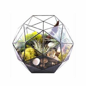 Potted Plant Vase Geodesic Dome Terrariums Succulents Flowers Wedding Decoration