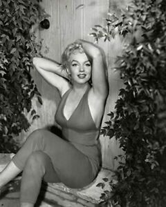 "Marilyn Monroe 1954 Posed Photo (Size: 8"" X 10"")"