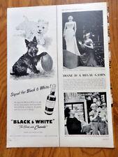 1955 Black White Scottish Scotty Terrier Westie Ad Blackie & Whitey Football