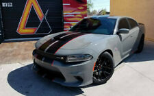 """2009 - 2020 Dodge Charger 2 color 10"""" Twin Rally stripes Stripe Graphics"""