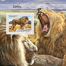 Mozambique 2016 MNH Lions 1v S/S West African Lion Big Cats Wild Animals Stamps