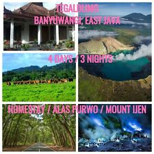 4 TO GO, BANYUWANGI - EAST JAVA INDONESIA (4 DAYS / 3 NIGHT) HOMESTAY PACKAGE