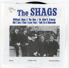 "THE SHAGS  ""DID I SAY (THAT I LOVE YOU) - TALK TO A SIDEWALK"" FOLK ROCK  LISTEN!"