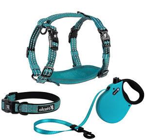 alcott Adventure Retractable Dog Leash or Harness or Collar - Blue S - M - L