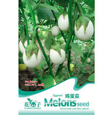 FD1228 Hot White Eggplant Seed Vegetable Seeds *1 Pack 20 Seeds* Free Shipping