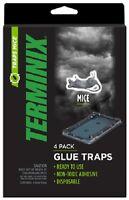 AP & G, Terminix, 12 Pack, Mouse Glue Trap