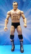 WWE WCW Mattel Elite Legends Flashback Larry Zbyszko Wrestling Figure