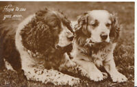 Animals Postcard - Two Dogs - Hope To See You Soon - Real Photograph - Ref 7A