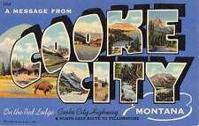 Cooke City Montana Buffalo Large Letter Linen Antique Postcard K22113
