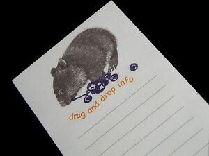 Australia Souvenir Wombat Jane Burrell Writing Paper Note Pad Jotta Drag & Drop