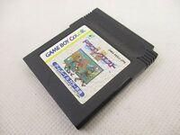 Game Boy Color Nintendo DRAGON WARRIOR I II 1 2 Quest Cartridge * gbc