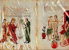 Faks. st. 20-Medicina Antiqua = Codex vindobonensis 93 reine roi couronne