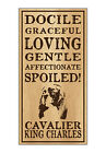 Wood Dog Breed Personality Sign - Spoiled Cavalier King Charles (Spaniel)
