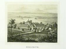 Tonlithografie 1854 - TIRPERSDORF Rittergut Schloditz - Poenicke