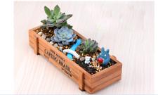 Wood Flower Planter Succulent Pot Rectangle Trough Decor Box Garden Plant BedFeh