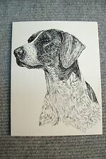 German Pointer Pen and Ink Stationary Cards, Note Cards, Greeting Cards. 10 ct.