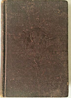 Vintage mystery THE GIRL IN CHECKS by Rev.J.W. Daniel 1892 HC VG L.L. Pickett SC
