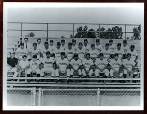 1969 Tucson Toros Team 8 X 10 Photo