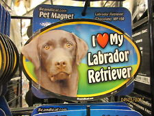 I Love My Chocolate Labrador 6 inch oval magnet for car or anything metal  New