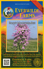 300 Rocky Mountain Bee Plant Wildflower Seeds - Everwilde Farms Mylar Packet
