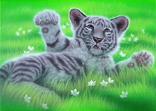 3D MOVING PICTURE 400mm X 300mm WHITE TIGER CRYSTAL EYES