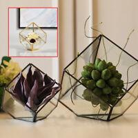 Glass Geometric Terrarium Faceted Tabletop Succulent Plants Container Pot  AU