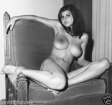 1960s Model Lillian Parker large breasts Pinup #5  5 x 5  Photograph