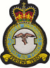 No. XXV (25) (F) Squadron Royal Air Force RAF Crest MOD Embroidered Patch