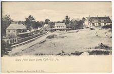 Ephrata PA Clare Point Stock Farm National Art View Postcard