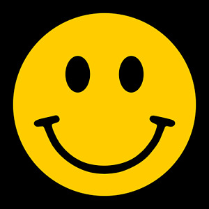 Car Sticker Smiley Face Window Decals Bumper Happy Face Door Wall Vinyl  D