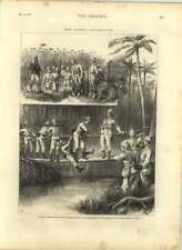 1875 Capt Branch Was Party Crossing A Mangrove Swamp, Native Bridge Luculla