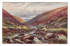 Tavy Cleave - Dartmoor Tuck Art Postcard 1941