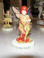 FLOWER FAIRIES CICELY MARY BARKER HAWTHORN FAIRY WITH BOX