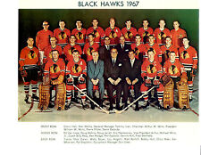 1967 CHICAGO BLACK HAWKS 8X10 TEAM PHOTO HOCKEY NHL HOF ILLINOIS