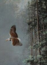 """On Silent Wings"" Lithograph Print of an Eagle by artist Les Didier 22""x28"""