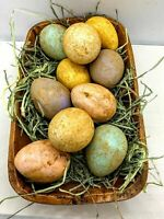 Primitive/Colonial Easter/Spring 10pc Grungy Cinnamon Dipped Easter Eggs Pastel