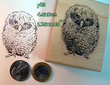 P83 Owlet, baby owl rubber stamp