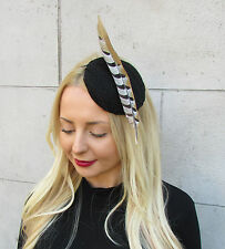 Black Brown Pheasant Statement Feather Fascinator Races Hat Headpiece Ascot 2303