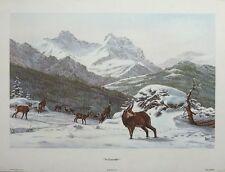 Camosci-Sandro Nardini imprimer-Vintage Mountain Goat Poster Print, 39x60cm