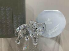 Swarovski Crystal Figurine Little Elephant Clear 7610 000 003 / 674587 MIB W/COA