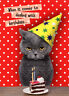 Dealing With Birthdays Cat Funny Birthday Card by Oatmeal Studios