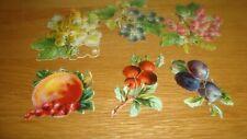 Mix Lot FRUIT / BERRIES  Vintage Scraps