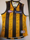 Hawthorn FC - 2013 AFL Premiers - Team signed jersey. COA & Photo Proof