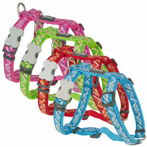NEW Red Dingo / ROGZ  Stylish Harness for Dog / Puppy 12MM / 15MM/ 20MM/ 25MM