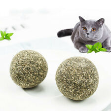 Pet Cat Natural Catnip Treat Ball Home Chasing Toys Healthy Edible Treating~ODAE