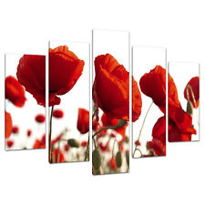 Set of Five Red Poppy Canvas Prints Pictures Wall Art Poppies 5056