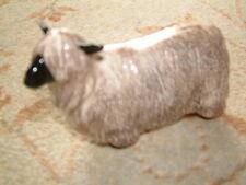 BESWICK WENSLEYDALE SHEEP