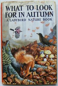 Vintage Ladybird Book –What to look for in Autumn & DJ–Nature 536–Good/Very Good