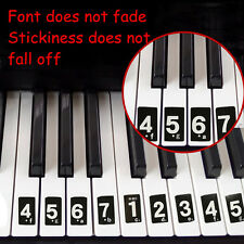 Piano Keyboard Music Note Sticker Lesson Key Decal Teach Full Piano 52 labels